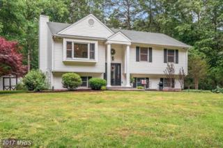 15463 Quail Ridge Drive, Amissville, VA 20106 (#CU9959513) :: Pearson Smith Realty