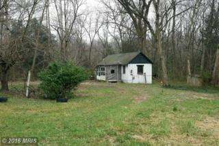17340 New Baltimore Road, Milford, VA 22514 (#CV9596378) :: Pearson Smith Realty