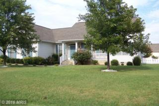 239 Dickinson Drive, Bowling Green, VA 22427 (#CV9755141) :: Pearson Smith Realty