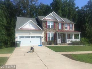 17439 Jackson Drive, Bowling Green, VA 22427 (#CV9856695) :: Pearson Smith Realty