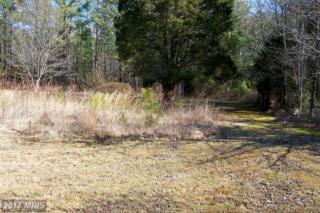 Jefferson Davis Highway, Ruther Glen, VA 22546 (#CV9860227) :: Pearson Smith Realty