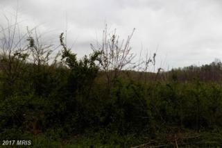 Country Rd, Beaverdam, VA 23015 (#CV9893625) :: LoCoMusings