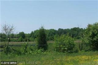 6112 Red Haven Road, East New Market, MD 21631 (#DO9685789) :: Pearson Smith Realty