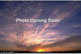 Bucktown Road, Cambridge, MD 21613 (#DO9791066) :: Pearson Smith Realty
