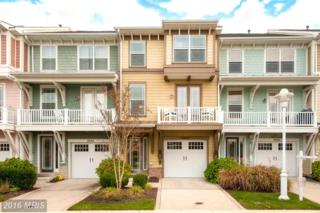 2822 Persimmon Place B3, Cambridge, MD 21613 (#DO9831641) :: Pearson Smith Realty