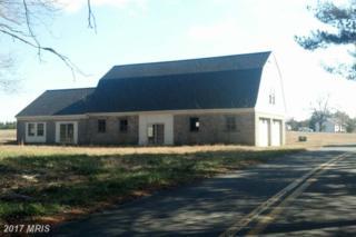 6319 Cabin Creek Road, Hurlock, MD 21643 (#DO9843532) :: Pearson Smith Realty