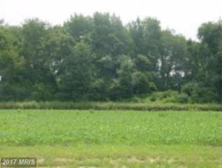 Little Creek Lane, Hurlock, MD 21643 (#DO9863598) :: Pearson Smith Realty