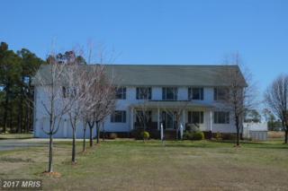 2613 Hoopers Island Road, Fishing Creek, MD 21634 (#DO9882955) :: Pearson Smith Realty