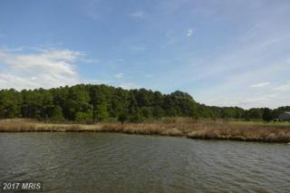 Pine Top Road, Taylors Island, MD 21669 (#DO9915520) :: Pearson Smith Realty