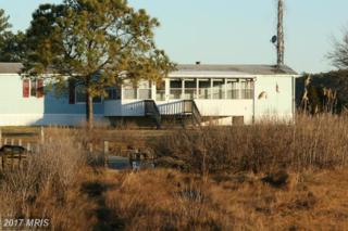 4405 Horseman Road, Taylors Island, MD 21669 (#DO9918656) :: Pearson Smith Realty
