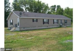 5840 Richardson Road, East New Market, MD 21631 (#DO9919584) :: Pearson Smith Realty