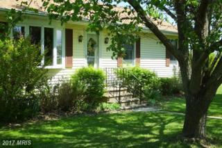 2841 Hoopers Island Road, Church Creek, MD 21622 (#DO9923655) :: Pearson Smith Realty