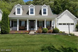 128 Regulator Drive N, Cambridge, MD 21613 (#DO9934291) :: Pearson Smith Realty