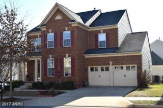 1000 Graham Drive, Fredericksburg, VA 22401 (#FB9868128) :: LoCoMusings