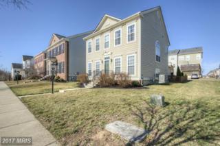 1201 Taylor Street, Fredericksburg, VA 22401 (#FB9869978) :: LoCoMusings