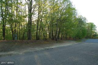 Fall Hill Avenue, Fredericksburg, VA 22401 (#FB9872301) :: LoCoMusings