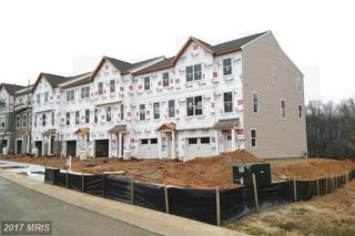 1436 Teagan Drive, Fredericksburg, VA 22408 (#FB9872811) :: Pearson Smith Realty