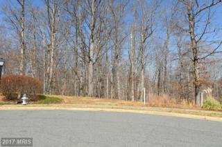 1013 Featherston Court, Fredericksburg, VA 22401 (#FB9883373) :: Pearson Smith Realty
