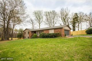 131 Woodland Road, Fredericksburg, VA 22401 (#FB9912345) :: Pearson Smith Realty