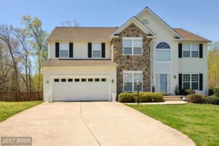 1005 Oakwood Court, Fredericksburg, VA 22401 (#FB9916645) :: LoCoMusings