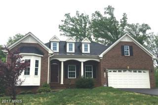1012 Jamis Place, Fredericksburg, VA 22401 (#FB9935579) :: Pearson Smith Realty