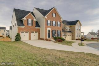 1005 Everett Court, Fredericksburg, VA 22401 (#FB9938153) :: Pearson Smith Realty