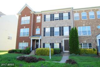 1110 Hampton Street, Fredericksburg, VA 22401 (#FB9944292) :: Pearson Smith Realty