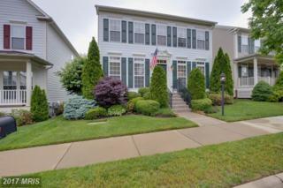 1205 Patrick Street, Fredericksburg, VA 22401 (#FB9949756) :: Pearson Smith Realty
