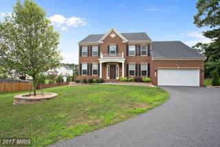 1412 Preserve Lane, Fredericksburg, VA 22401 (#FB9959247) :: Pearson Smith Realty