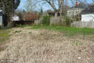 506 Littlepage Street, Fredericksburg, VA 22401 (#FB9960001) :: Pearson Smith Realty