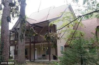 4020 Stonewall Avenue, Fairfax, VA 22032 (#FC9830599) :: Pearson Smith Realty