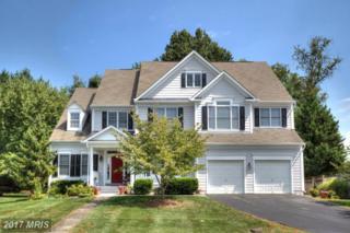 3575 Sharpes Meadow Lane, Fairfax, VA 22030 (#FC9873095) :: LoCoMusings