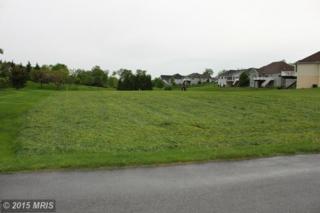 Bent Oak Drive, Fayetteville, PA 17222 (#FL8579359) :: Pearson Smith Realty