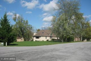 288 Sandoeshire Lane, Chambersburg, PA 17201 (#FL9777141) :: Pearson Smith Realty