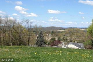 11137 Weatherstone Drive, Waynesboro, PA 17268 (#FL9807013) :: Pearson Smith Realty