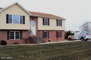 10618 Thornwood Road, Shippensburg, PA 17257 (#FL9828829) :: Pearson Smith Realty