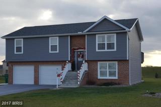 63 Noble Drive, Shippensburg, PA 17257 (#FL9837479) :: Pearson Smith Realty