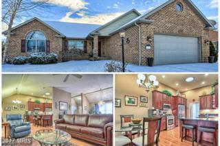 6272 Oak Leaf Lane N, Fayetteville, PA 17222 (#FL9837768) :: Pearson Smith Realty