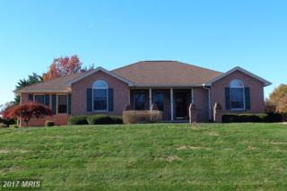 6365 Quail Circle, Fayetteville, PA 17222 (#FL9841253) :: Pearson Smith Realty