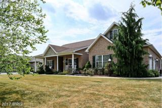 102 Carowinds Drive, Greencastle, PA 17225 (#FL9842039) :: Pearson Smith Realty