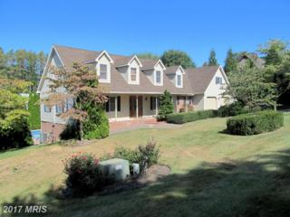 511 Larkspur Lane, Chambersburg, PA 17202 (#FL9843009) :: Pearson Smith Realty
