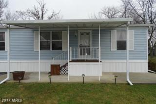 104 Cameo Drive, Fayetteville, PA 17222 (#FL9845673) :: Pearson Smith Realty