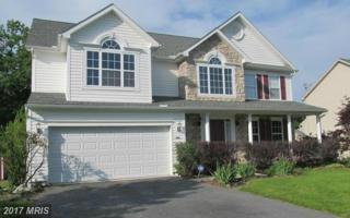 1401 Mallard Drive E, Chambersburg, PA 17202 (#FL9847279) :: Pearson Smith Realty
