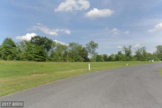 LOT 5 Toms Lane, Greencastle, PA 17225 (#FL9850926) :: LoCoMusings