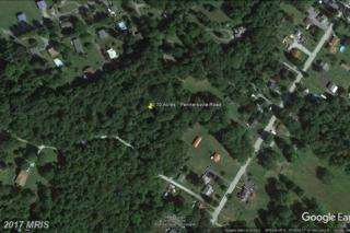 Pennersville Road, Waynesboro, PA 17268 (#FL9853062) :: Pearson Smith Realty