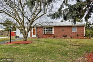 1181 Mainsville Road, Shippensburg, PA 17257 (#FL9854052) :: Pearson Smith Realty