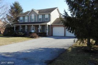 1403 Hamilton Hills Drive, Chambersburg, PA 17202 (#FL9854434) :: LoCoMusings