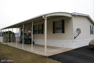 193 Cameo Drive, Fayetteville, PA 17222 (#FL9854701) :: Pearson Smith Realty