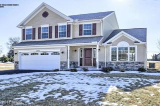 Castleton Drive, Chambersburg, PA 17202 (#FL9861338) :: Pearson Smith Realty