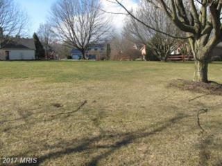 Fiddler's Road, Chambersburg, PA 17202 (#FL9862128) :: Pearson Smith Realty